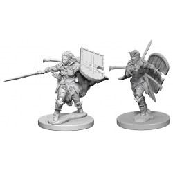 Pathfinder Battles Deep Cuts Unpainted Miniatures Wave 1 - Human Female Paladin in D&D Miniatures