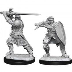 D&D Nolzur's Marvelous Miniatures: Wave 14 Male Human Paladin в D&D и други RPG / D&D Миниатюри