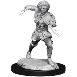 Magic: The Gathering Unpainted Miniatures: Wave 14 Kaya в D&D и други RPG / D&D Миниатюри