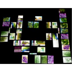 Herbaceous (2017) - настолна игра