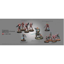 Infinity Nomads - Corregidor Jurisdictional Command 300 Points Army Pack в Nomads