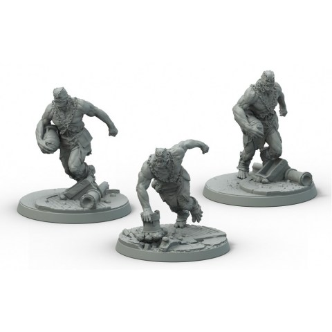 Fallout: Wasteland Warfare - Super Mutants Suiciders Box